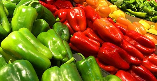 Entreposage sous température dirigée de produits Agro-alimentaire Lyon